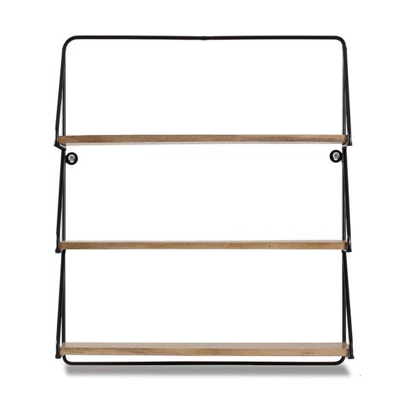 Carey 3-Tier Floating Wall Shelf by Brayden Studio