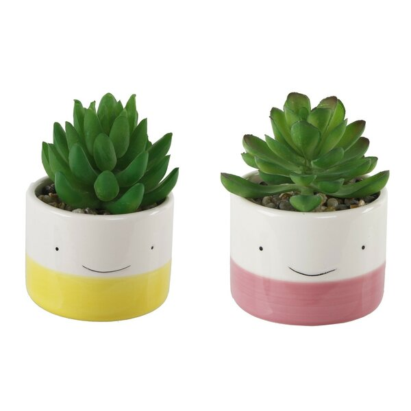 2 Piece Happy Face Cactus Desktop Succulent Plant Set by Wrought Studio