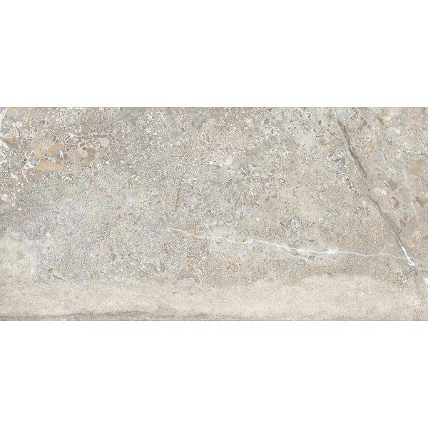 Vstone 19 x 38 Porcelain Field Tile in Nut Matte by Tesoro
