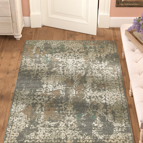 Forcalquier Gray Indoor Area Rug by Lark Manor