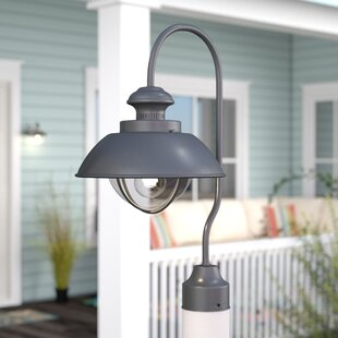 Big Save Bonaventure 1-Light Lantern Head By Beachcrest Home