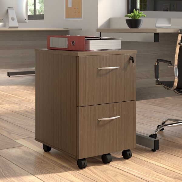 Myrna 2-Drawer Mobile Vertical Filing Cabinet