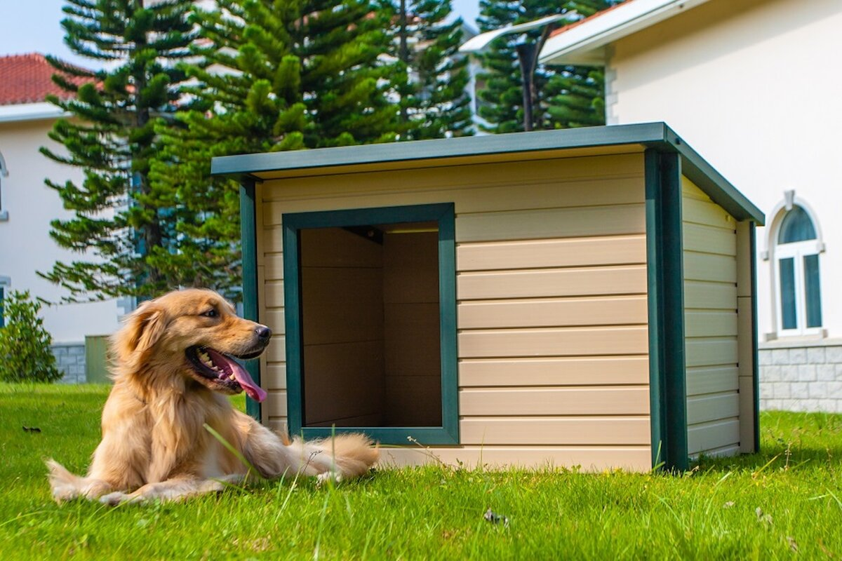Jumbo EcoChoice Rustic Lodge Style Dog House