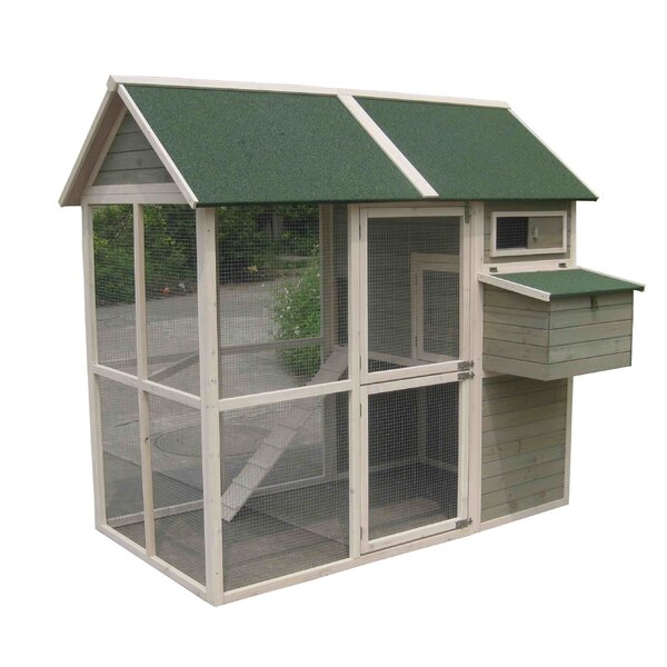 Coops and Feathers Walk-in Chicken Coop by Innovation Pet
