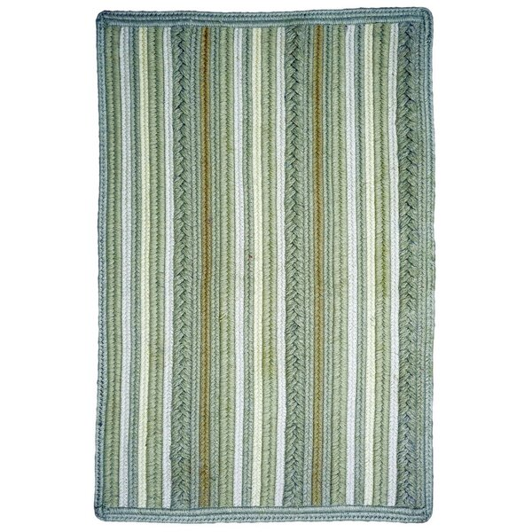 Portsmouth Braided Polyester Oatmeal Indoor/Outdoor Area Rug by Homespice Decor