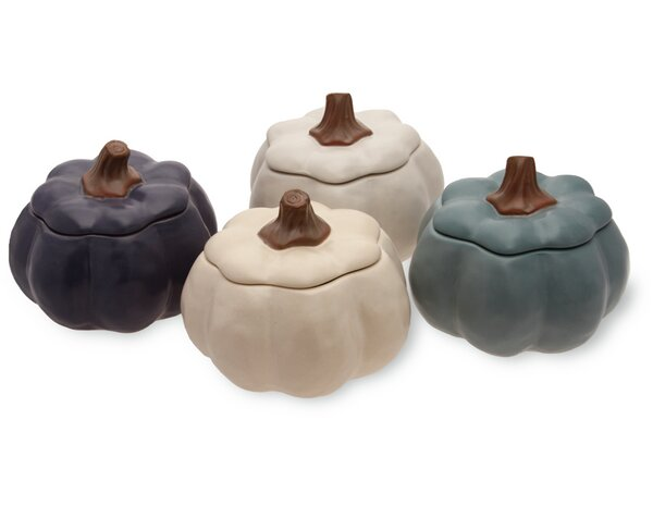 Pumpkin Stoneware Dining Bowl (Set of 4) by Boston International