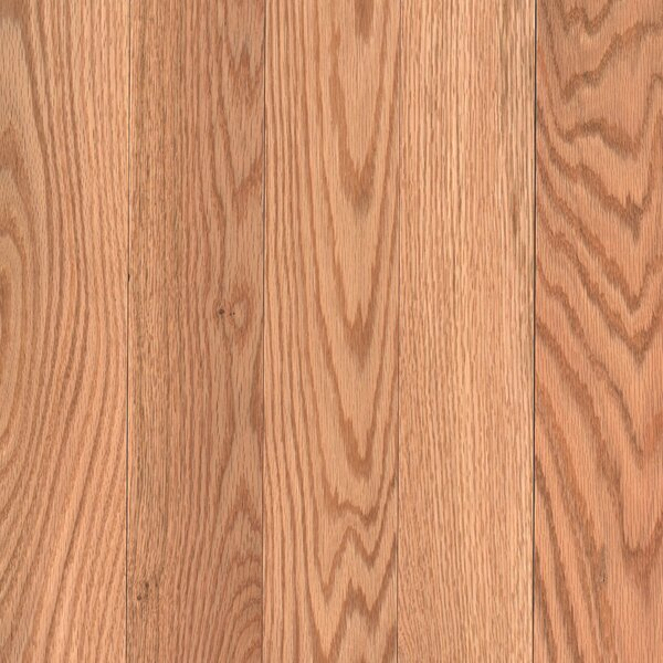Barletta 3-1/4 Solid Oak Hardwood Flooring in Red Natural by Mohawk Flooring