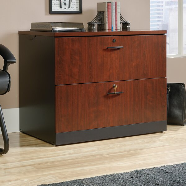Castalia Lateral File 2-Drawer Lateral Filing Cabinet by Red Barrel Studio
