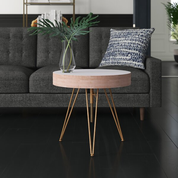 Mount Barker Coffee Table With Storage By Mercury Row