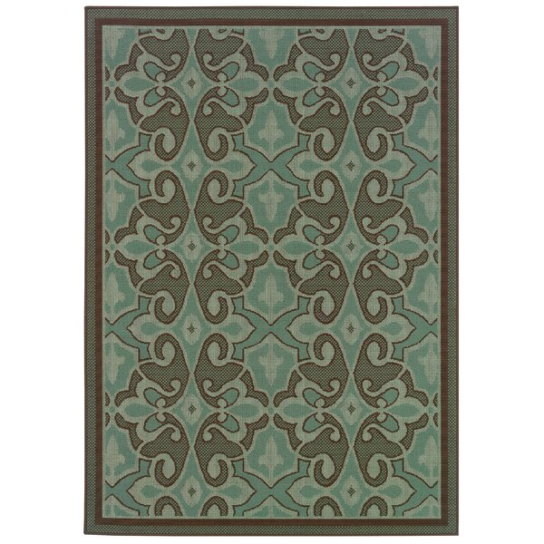 Newfield Aqua Blue/Brown Indoor/Outdoor Area Rug by Threadbind