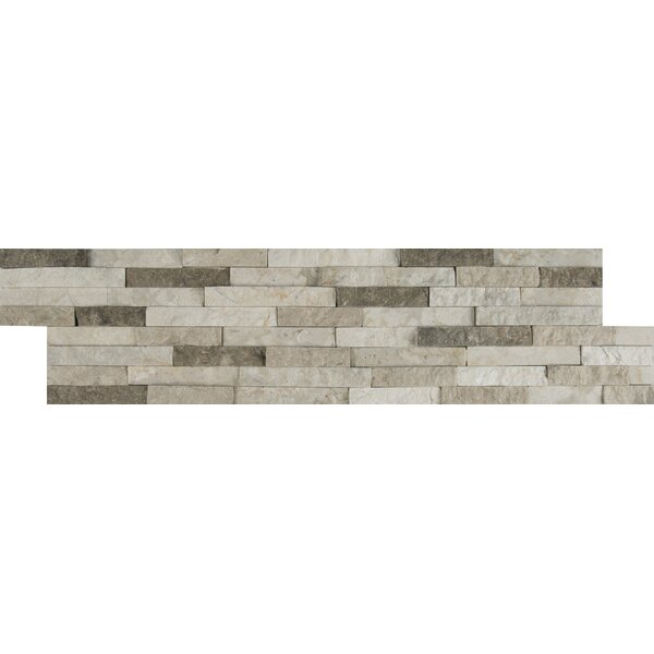 Colorado Canyon Pencil Ledger Panel 6 x 24 Stone Split Face Tile in Natural by MSI