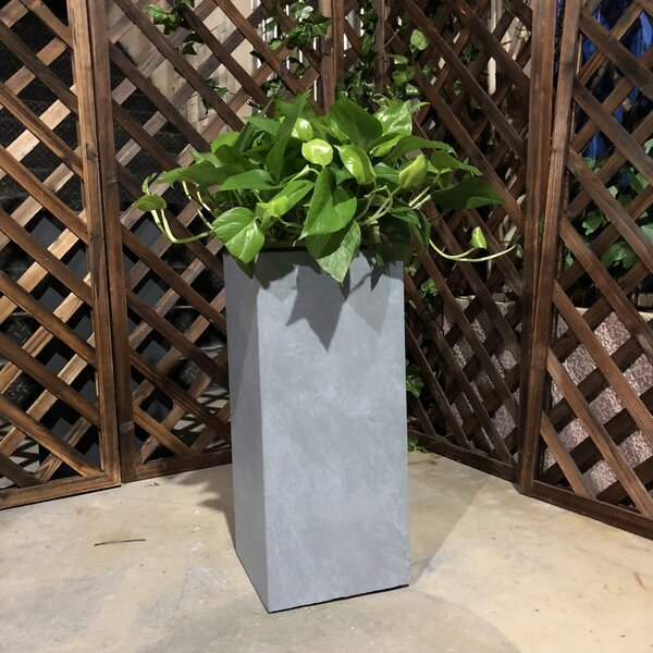 Fugate Tall Pot Planter by Williston Forge
