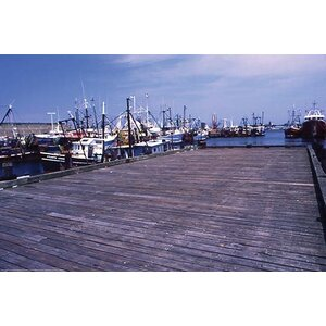 'New Bedford Fishing Boats' by William B. Folsom Photographic Print by Buyenlarge