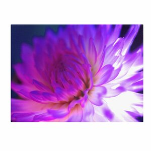 Mod Dahlia by Kathy Yates Photographic Print on Canvas by Trademark Fine Art