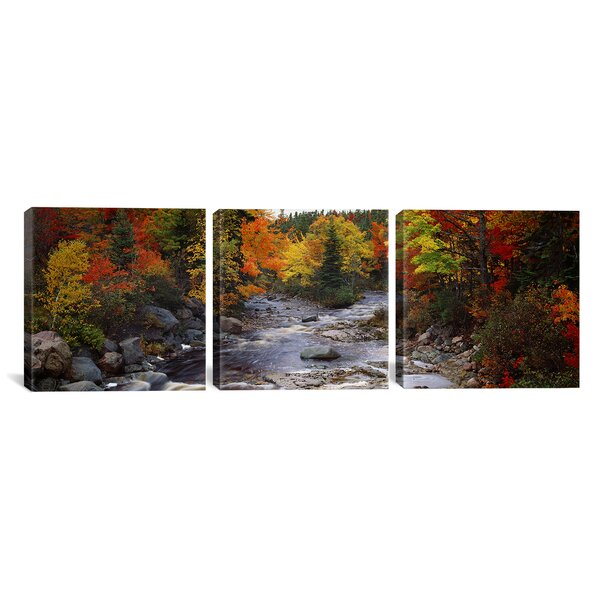 Stream with Trees in a Forest in Autumn Nova Scotia, Canada 3 Piece Photographic Print on Wrapped Canvas Set by Loon Peak