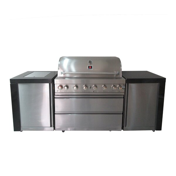 Belva Outdoor 8-Burner Convertible Gas Grill by Orren Ellis
