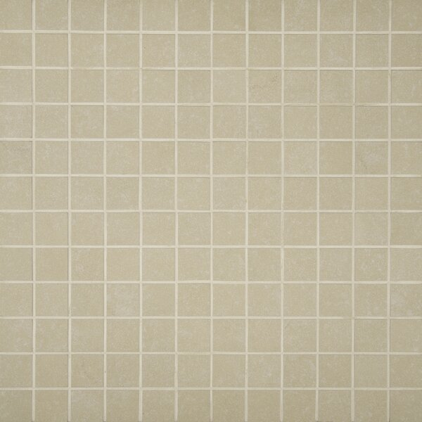 Dimensions 2 x 2 Porcelain Mosaic Tile in Beige by MSI