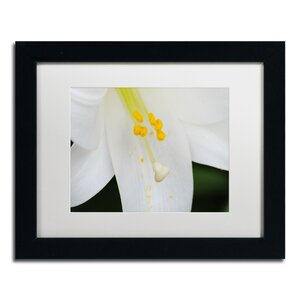 Adore You by Monica Mize Framed Photographic Print by Trademark Fine Art