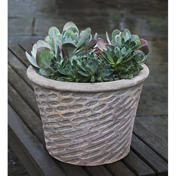 Rymer Terracotta Pot Planter by Brayden Studio