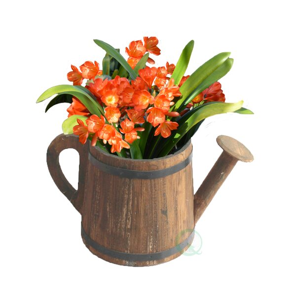 Wood Pot Planter by Gardenised