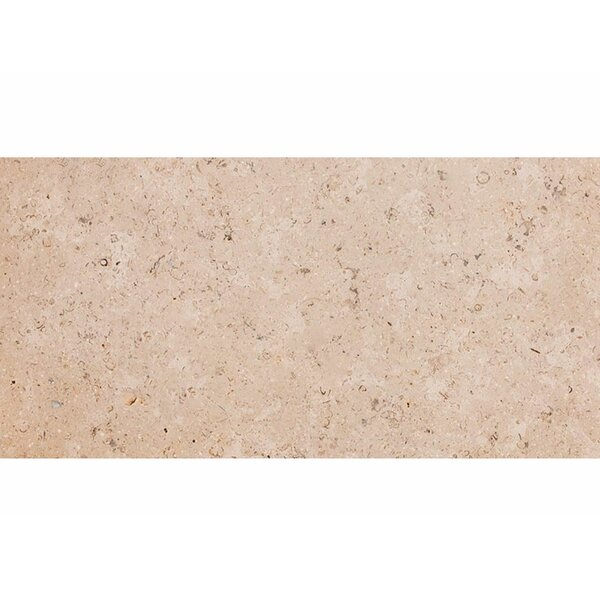 Dijon 12 x 24 Stone Field Tile in Brushed Beige by Parvatile