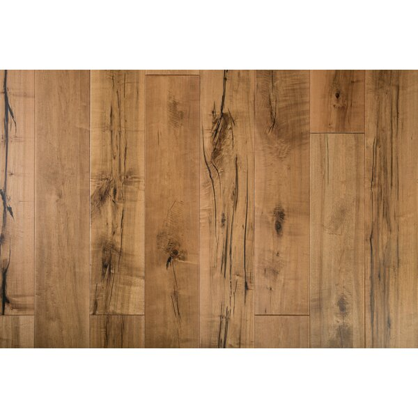 Sandstone 7-1/2 Engineered Maple Hardwood Flooring in Rustic Natural by GoHaus