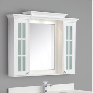 Reviews Conner 48 x 36 Surface Mount Medicine Cabinet with Lighting ByRosecliff Heights
