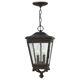 Pullins 2-Light Outdoor Hanging Lantern By Charlton Home Outdoor Lighting