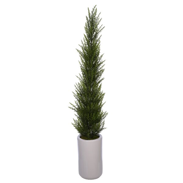 Artificial Desktop Cedar Topiary in Pot by Wrought Studio