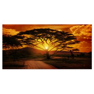 'African Sunset with Lonely Tree' Photographic Print on Wrapped Canvas by Design Art