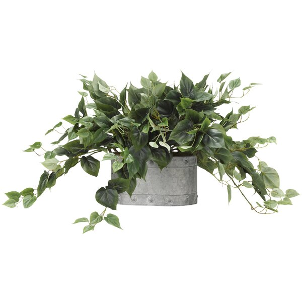 Philo Oval Metal Ivy Plant in Planter by Gracie Oaks