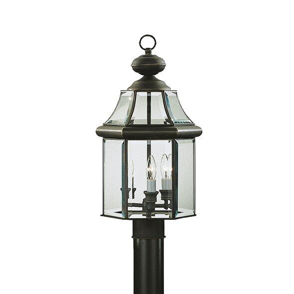 Barlyne Outdoor 3-Light Lantern Head by Astoria Grand