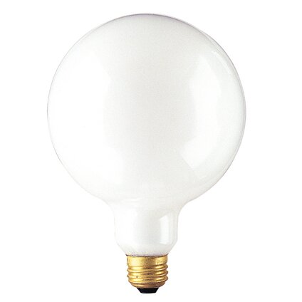 100W Frosted 125-Volt (2700K) Incandescent Light Bulb (Set of 8) by Bulbrite Industries