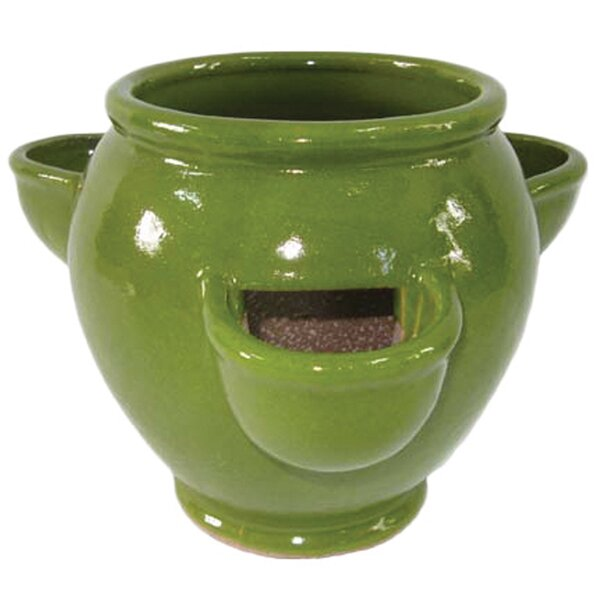 Ceramic Pot Planter by Craftware