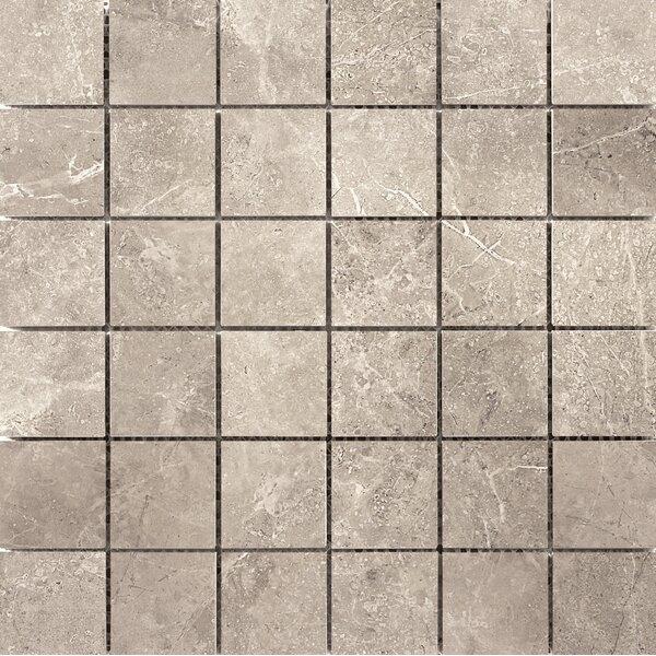 Realm 2 x 2 Ceramic Mosaic Tile in Nation by Emser Tile