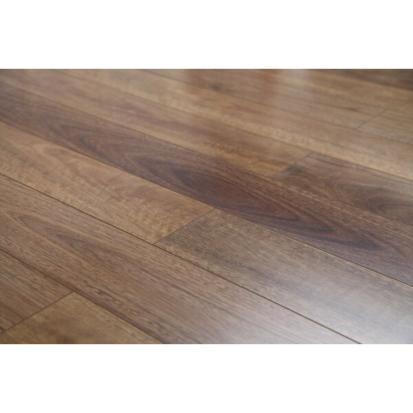 Lucency 47.85 x 4.96 x 12mm Laminate Flooring in Blooming Eucalyptus by Dekorman