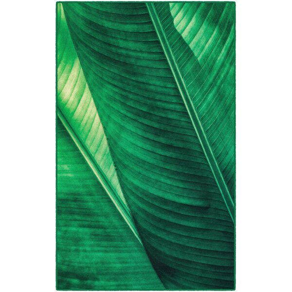 Potts Leaf Green Area Rug by Bay Isle Home