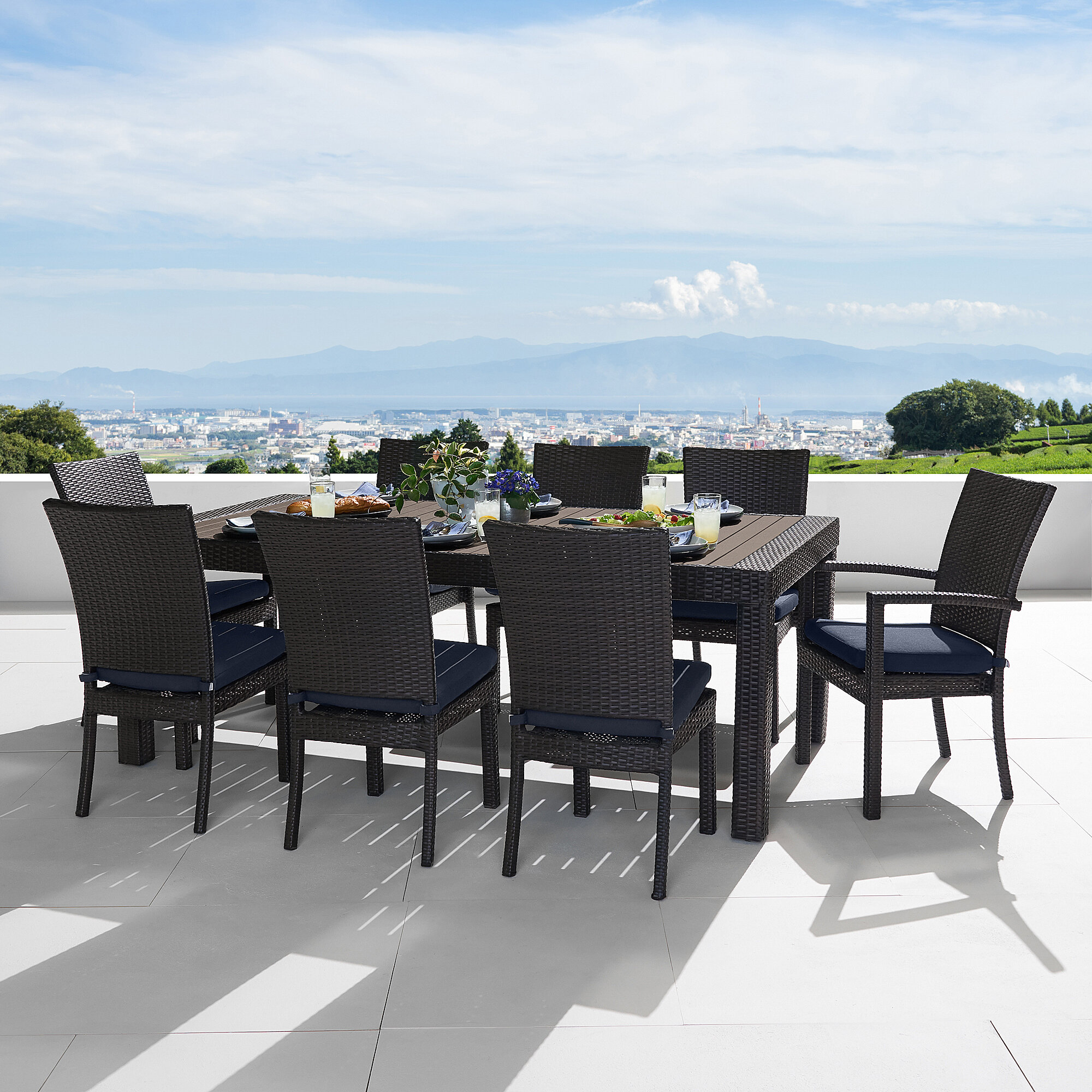 9 Piece Laurie Patio Dining Set In