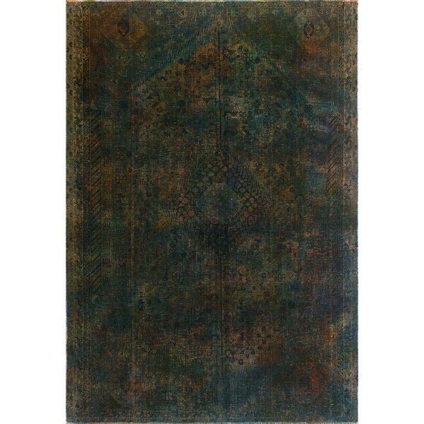 One-Of-A-Kind Brook Hand-Knotted Wool Done Area Rug by Isabelline