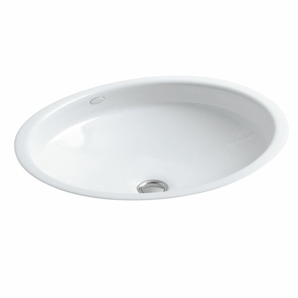 Canvas Metal Oval Undermount Bathroom Sink with Overflow by Kohler