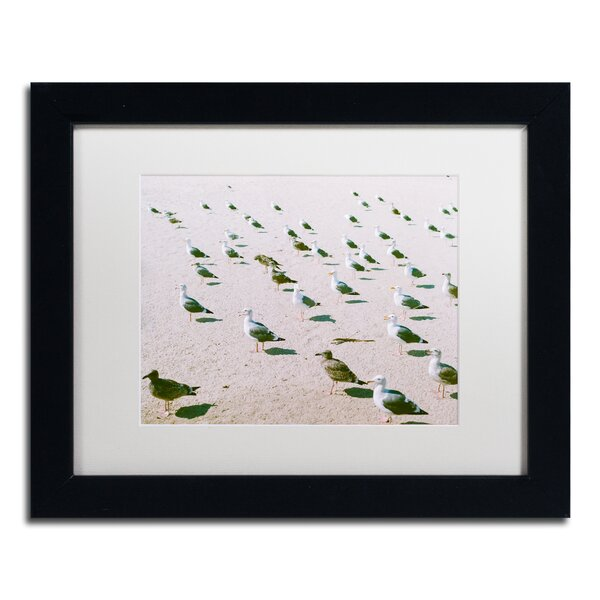 Seagulls at the Beach by Ariane Moshayedi Framed Photographic Print by Trademark Fine Art