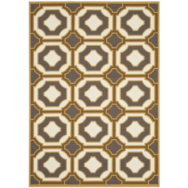 Hampton Dark Grey/Ivory Outdoor Area Rug by Safavieh