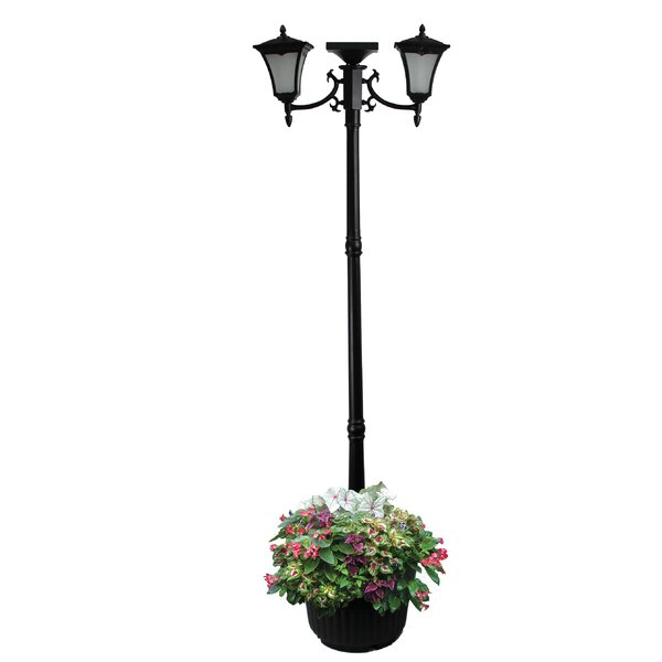 Chigwell 2-Light 82.3 Post Light by Darby Home Co