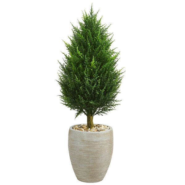 Cone Artificial Floor Cypress Tree in Planter by Bloomsbury Market