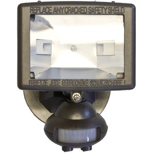 Look for Motion Activated Lights 1-Light Outdoor Floodlight By Morris Products