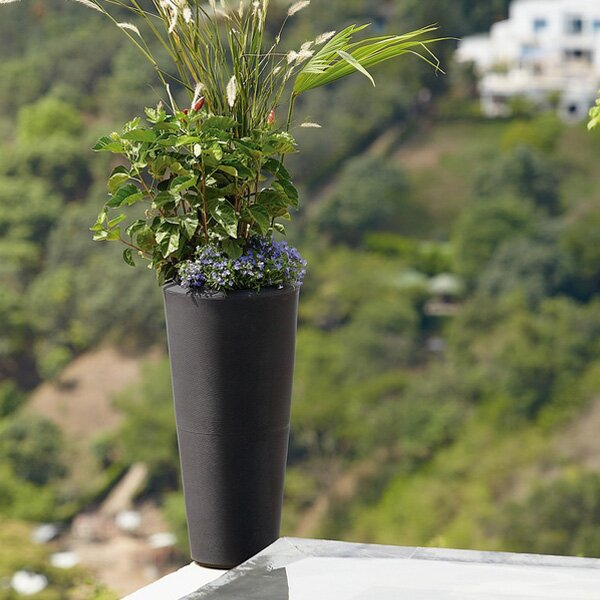 Cartagena Pot Planter by Latin Spirit