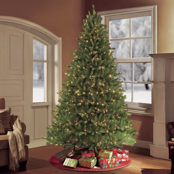Puleo International 7.5 ft. Pre-Lit frazer Fir Artificial Christmas Tree with 750 Clear UL listed Lights by Puleo International