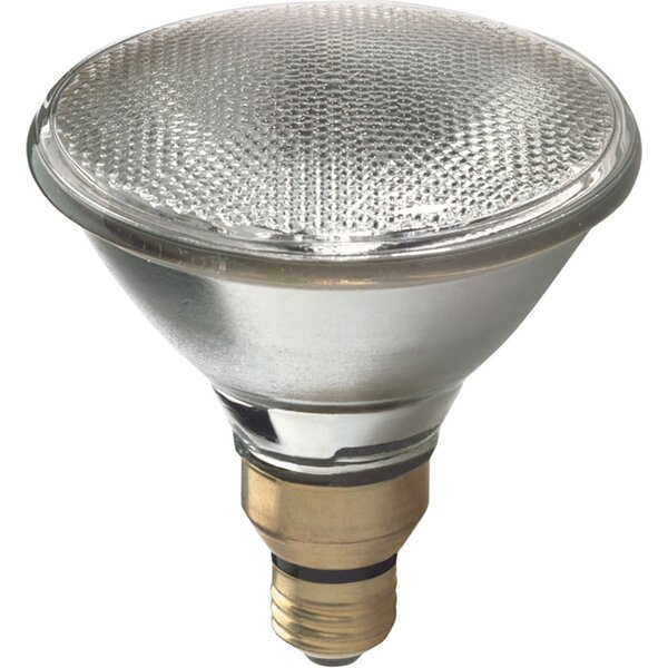 90W Grey Halogen Light Bulb by GE Lighting