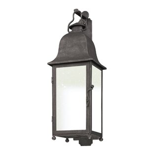 Susannah 1-Light Outdoor Wall Lantern By Darby Home Co Outdoor Lighting