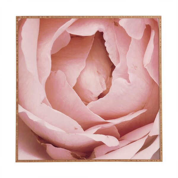 Versailles Rose by Happee Monkee Framed Photographic Print by Deny Designs